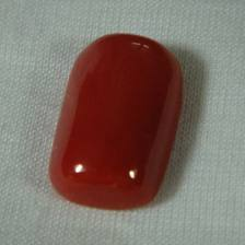Description: Red Coral Gemstone